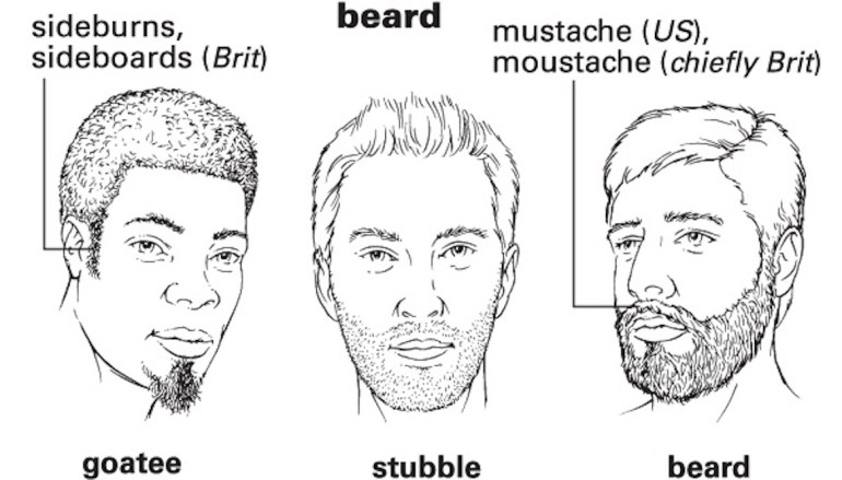 beard_rev