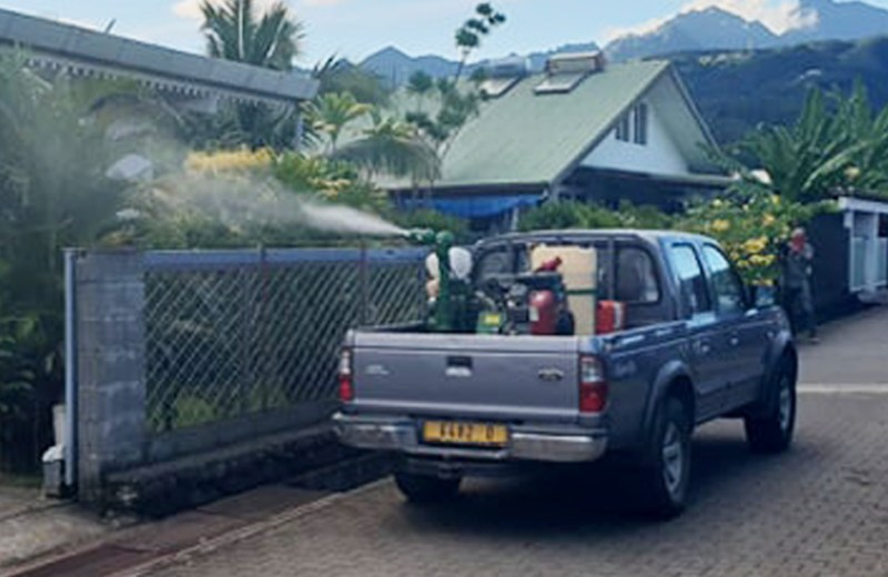 2 dengue