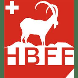 fff hb