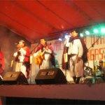 Se realizó el XV Festival de la Uva y el Vino Patero