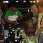 Maquinarias y alcohol vínico para pequeños productores de vino artesanal