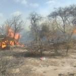 Un grave incendio arrasó con cuatro hectáreas de monte