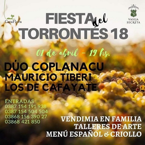 0 Fiesta del torrontes 2018
