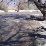 Enorme preocupación por el estado del Río Chuscha