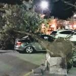 Graves daños a causa del viento