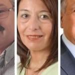 Leavy, Giménez y Romero consiguen la banca en la Cámara de Senadores