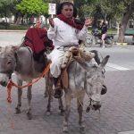 """El gaucho """"Caraguay"""" sacó a «La Sentadita» en procesión por los barrios de Cafayate"""