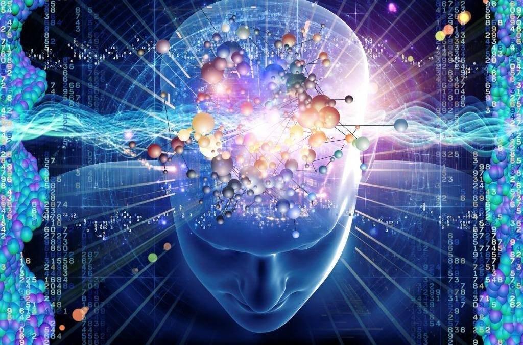 ¿Cómo funciona el cerebro de los adolescentes?