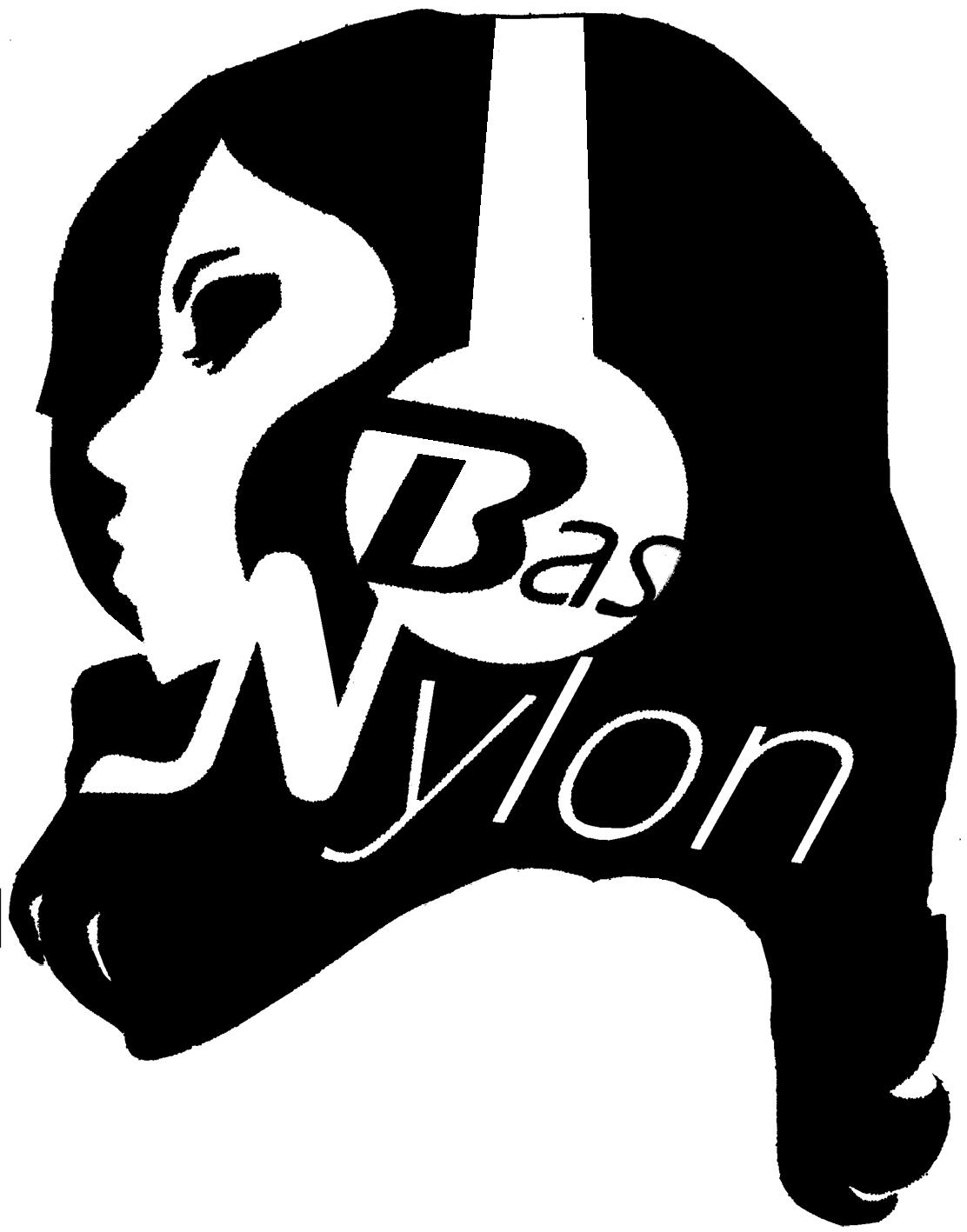 logo Bas Nylon 2014