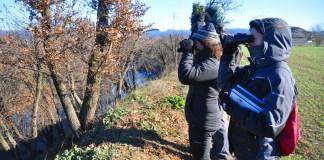 El Riu Ter | Imatge del CERM
