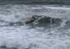 Un home surfeja a Sa Riera   Imatge de Ràdio Capital