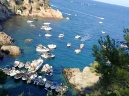 Cala d'en Massoni durant el dissabte 10 d'agost | Imatge de Salvem el Golfet