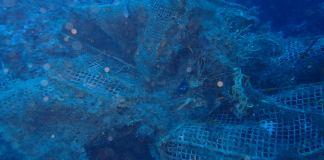 Arts de pesca a la zona de Llafranc | Imatge de FECAS