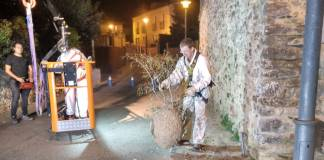 Niu de vespa al carrer Núria de Palafrugell | Imatge de l'Ajuntament de Palafrugell