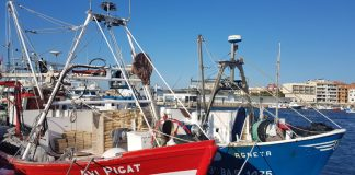 Embarcacions de pesca al Port en una imatge d'arxiu