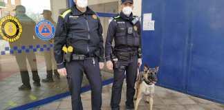 privat:-la-policia-local-de-palafrugell-incorpora-una-unitat-canina-per-fer-front-al-consum-i-tinenca-de-substancies-estupefaents