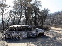 incendi gavarres cotxe cremat