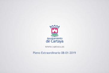 Pleno Municipal Extraordinario (08-01-2019)