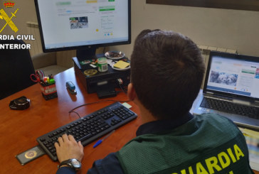 La Guardia Civil detiene a 3 personas e investiga a otras 2 por la comisión reiterada de estafas a través de Internet