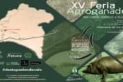 Villanueva de los Castillejos celebró su decimoquinta edición de la Feria Agroganadera del Cerdo Ibérico