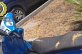 La Policía Local de Cartaya recupera un ciclomotor robado en Lepe