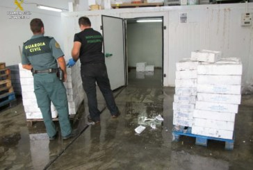 La Guardia Civil interviene una gran cantidad de productos pesqueros en una nave clandestina en Huelva