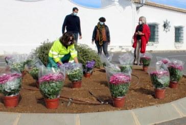 El Ayuntamiento de Cartaya repone con un millar de plantas las zonas ajardinadas de la localidad