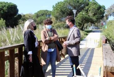 El Ayuntamiento rehabilita el Puente del Gamonal y mejora el sendero del Caño de la Culata, en Nuevo Portil