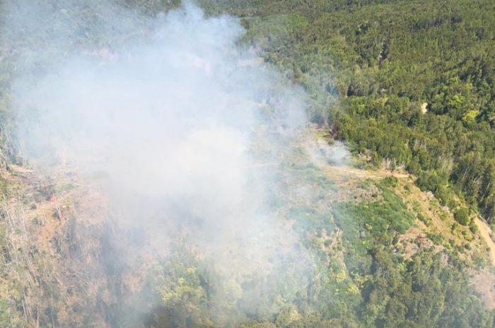 Regional: autoridades entregan balance por incendios forestales.