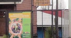 Castro: plaga de ratones afecta a jardín infantil.