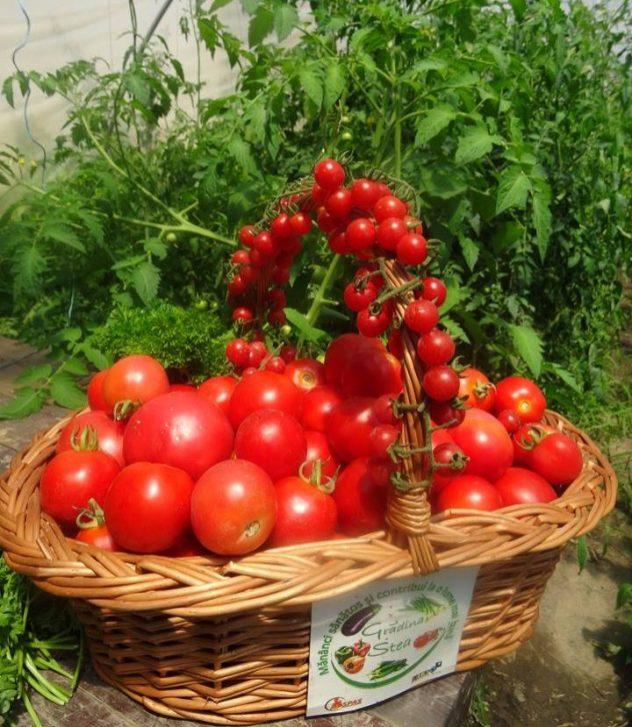 cos tomate rosii