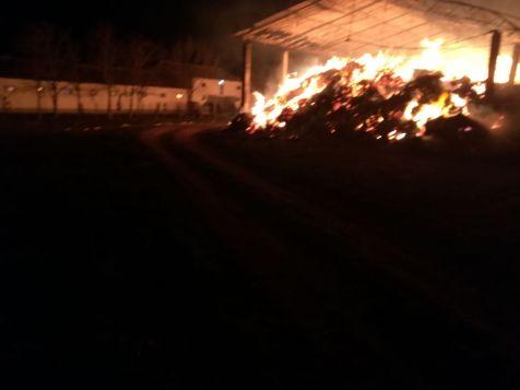 incendiu herghelie 2