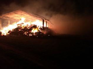 incendiu herghelie 5