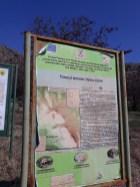 Traseul Valea Jijilei