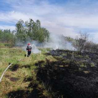 incendiu vegetatie Malniuc ISU Tulcea 3