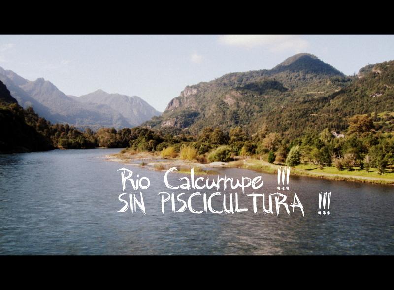 calcurrupe-salmonera