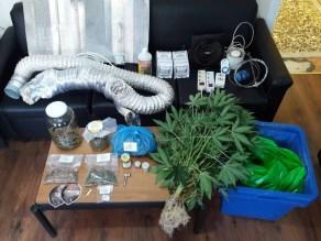 32χρονος καλλιεργούσε κάνναβη στο υπόγειο του σπιτιού του