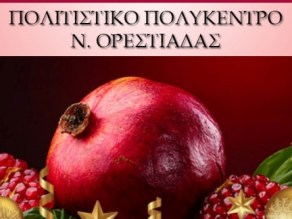 Ρόδινη ζωή, εξώφυλλο, παρουσίαση βιβλίου