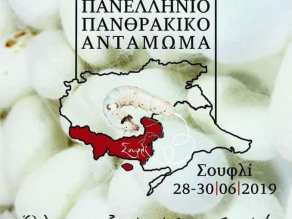 11ο Πανελλήνιο Πανθρακικό αντάμωμα, αφίσα