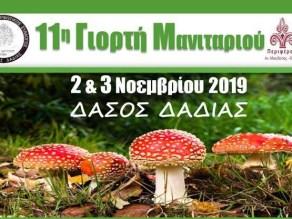 11η Γιορτή Μανιταριού στο Δάσος της Δαδιάς, εξώφυλλο