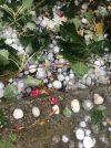 Αλεξανδρούπολη: Τεράστιες καταστροφές από την χαλαζόπτωση σε κτήρια, οχήματα και καλλιέργειες