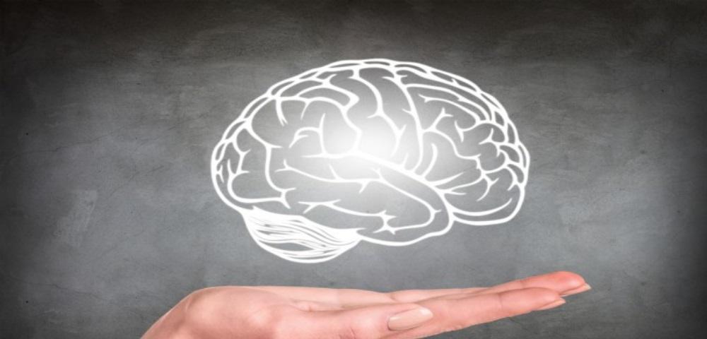 Un'equipe di scienziati scopre il potenziale farmaceutico delle sostanze psichedeliche