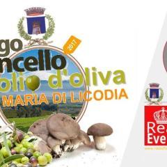 """Santa Maria di Licodia: """"Sagra del Fungo Cardongello e dell'Olio d'oliva"""""""
