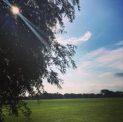DAY 43 - Aug 12th - Northwick Park by @Zolidali