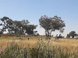 [LISTEN] Lenasia Residents Fed Up With Illegal Land Grabs – No Action from Gauteng Government