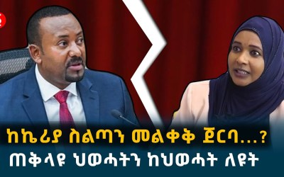 Executive Member of the TPLF Surrenders