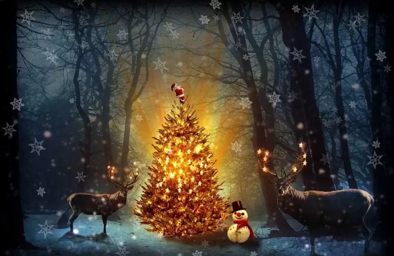 """Le buone feste di chi conosce la mancanza e forse anche l'amore. """"L'Albero di Natale"""" di Nazim Hikmet"""