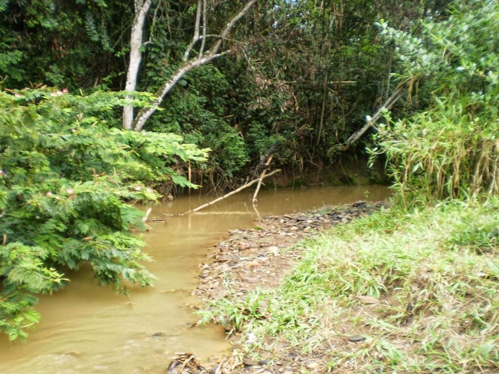 Los Avances en la Protección del BST del río Lilí - PARTE-MEDIA-1024x768