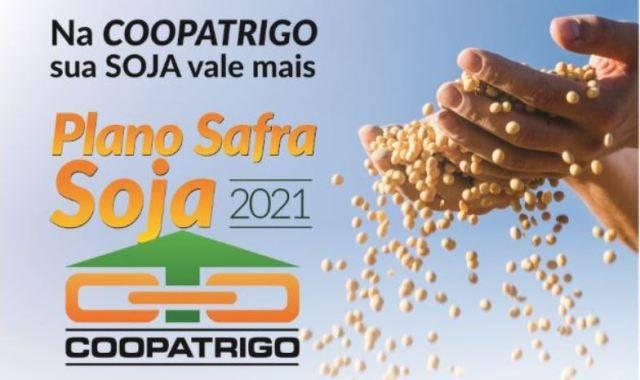 Credibilidade da Coopatrigo é um dos pontos fortes para a entrega da produção de soja