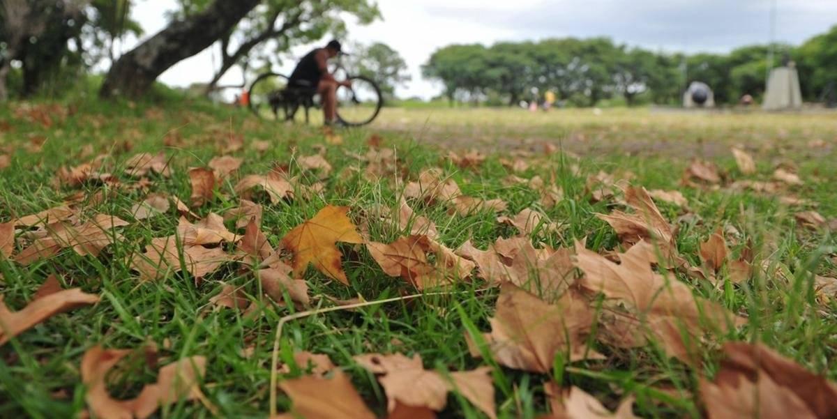 Outono começa neste sábado; veja como será a estação